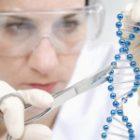 EMA lansează noi recomandări pentru dezvoltarea terapiilor genice