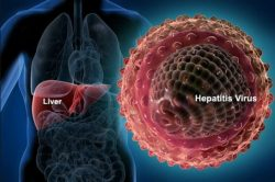 Sondaj ECDC: deficiențe în programele de testare și monitorizare a hepatitei în UE / SEE