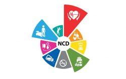 Miniștri ai sănătății și experți din 43 de țări, întâlnire pe tema bolilor netransmisibile
