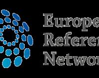 Proceduri mai simple pentru integrarea în rețelele europene de referință