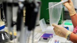 Laborator de cercetări în boli rare, la IOMC
