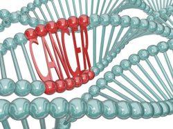 OncoGen reunește liderii mondiali în lupta împotriva cancerului și a bolilor alergice