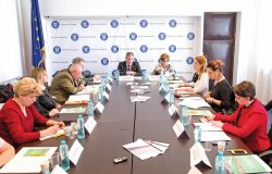 Optimizarea managementului diabetului zaharat de tip 2 pentru pacientul din România