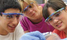 Amgen Scholars: cercetare în instituții de top din Europa și Japonia