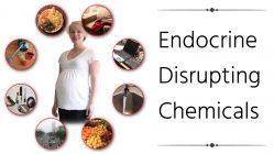 Parlamentul European vrea un nivel mai ridicat de protecție împotriva disruptorilor endocrini (EDC)