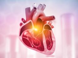 Îmbunătățirea politicii și a rezultatelor pentru persoanele cu boli cardiovasculare în Europa